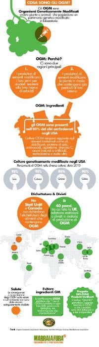 """Gli #OGM sono ovunque – si trovano nell'80% degli #alimenti confezionati in America e in oltre il 90% delle colture di soia e cotone solo negli USA.  Ma cosa sono gli OGM? Questa pratica infografica realizzata dal sito care2.com e tradotta in italiano da #Marraiafura offre una breve panoramica di ciò che significa essere """"geneticamente modificato"""".  #Food su @marraiafura"""
