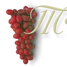 Magnanini Winery & Restaurant | magwine.com
