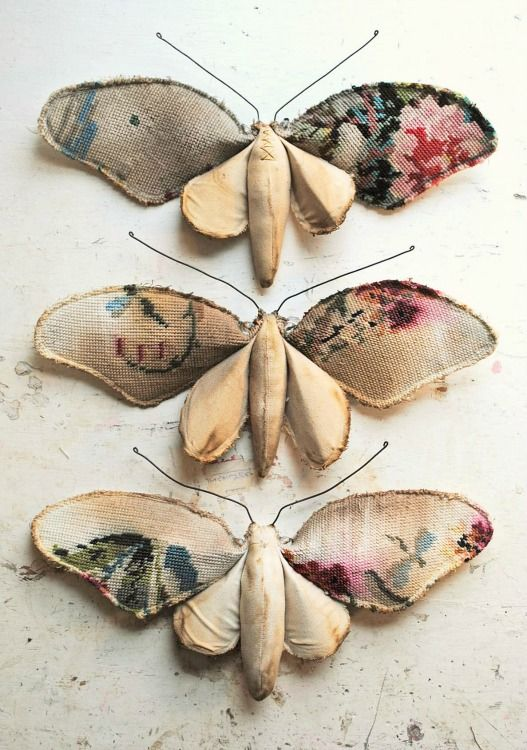 Mister Finch, 3 Flower moths