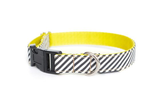 Dog Collar - Nautical Stripes