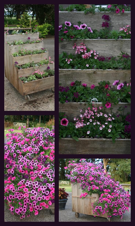 GARDEN IDEAS. Garden TipsGarden IdeasGarden LadderOutdoor ...