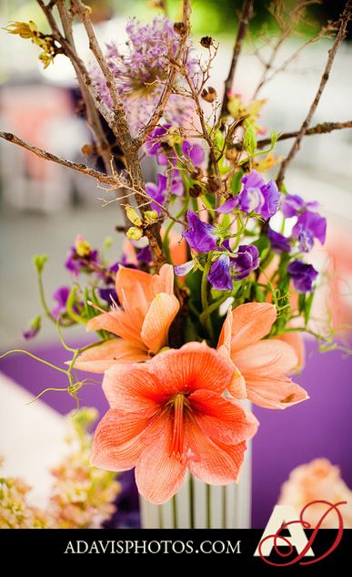59 Best Images About Peach And Purple Wedding On Pinterest