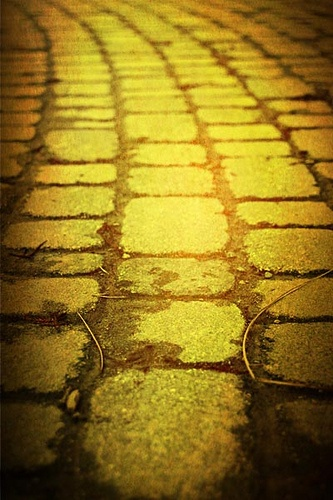 follow the yellow brick road....