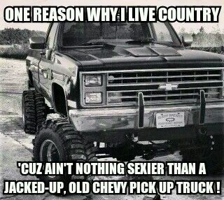 one reason why I choose to live a country lifestyle ...
