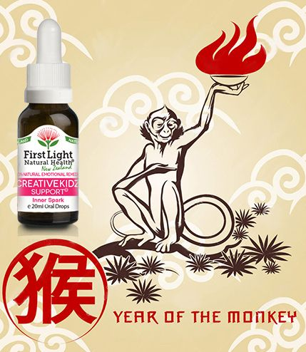 THE YEAR OF THE FIRE MONKEY BOUNDLESS CREATIVE ENERGY! The year of the Fire Monkey which is considered dynamic, fun and full of enthusiastic energy.The very qualities that children naturally exhibit. Creative Kidz Support©helps a child to tap into their own creative energy and unlimited potential and help them turn their ideas into something special this year.