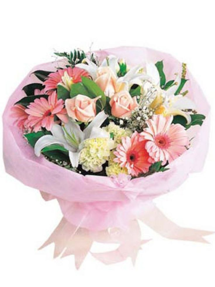 11 best Flowers Delivery in Chennai by Maya Flowers images on ...