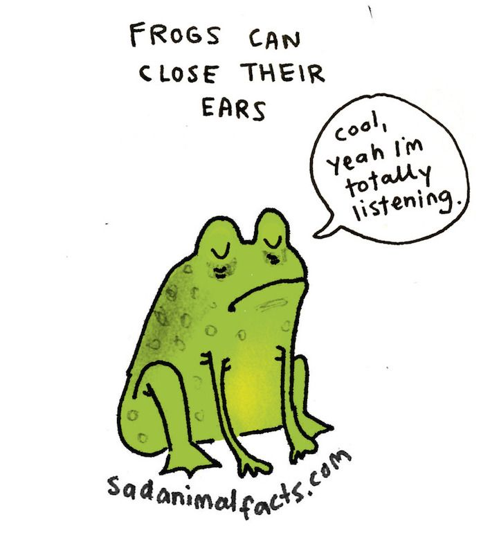 http://mymodernmet.com/brooke-barker-sad-animal-facts/