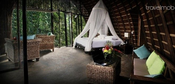 Traditional Eco-Villa in Ubud, Bali, Indonesia...http://www.travelmob.com/ubud-vacation-rentals-villa/traditional-eco-villa-nature-57638488295?utm_campaign=newsletter&utm_source=travelmob&utm_medium=email
