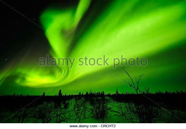 Northern Lights, aurora borealis above the Arctic, Hudson Bay, Manitoba, Canada - Stock Image