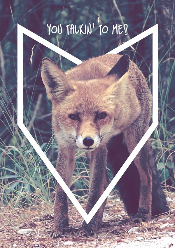 You talkin' to me? Foto tomada en Sierra de Cazorla.