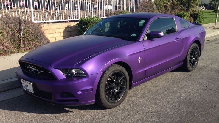 Black And Purple Mustang