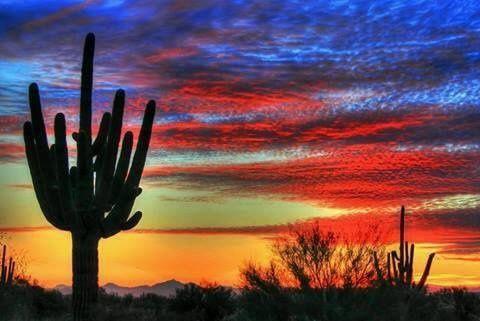 Tucson sunset | Southwest desert life | Pinterest