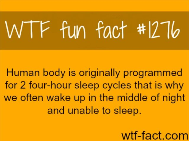 Wtf fun fact #1276 You mean to tell me it's not because I have to pee??