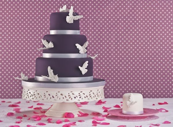 butterfly cake accents