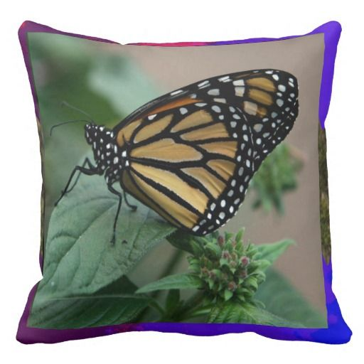 CUTE butterfly insect nature kids children family Throw Pillow
