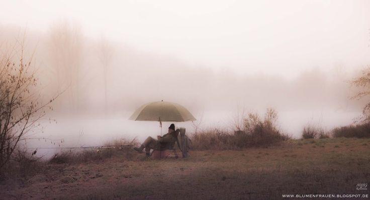 Fog, mist, rain, photography, Fotografie, Nebel, Regen, Stimmung, mystische Szene