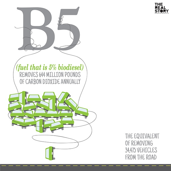 68 Best Biofuels Images On Pinterest