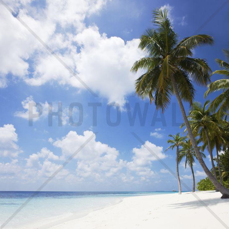 Paradise Beach - Fotobehang & Behang - Photowall