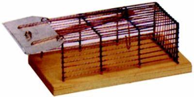 TRAPPOLA PER TOPI GRANDE IN RETE CM. 30x16x12h. http://www.decariashop.it/trappole-per-topi/16738-trappola-per-topi-grande-in-rete-cm-30x16x12h.html