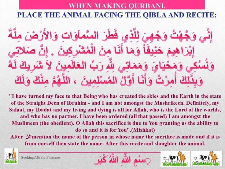 DUA FOR QURBANI