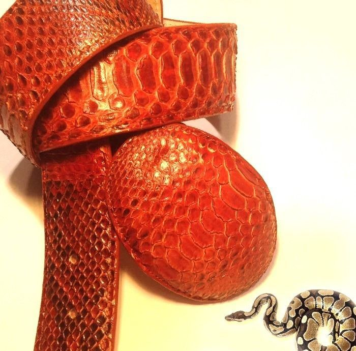 Premium Quality Hand crafted and Genuine Snake Skin Belt, Givaldi, KAM-P403 #GivaldiofItaly