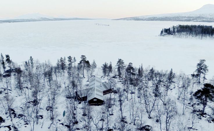 'El Hinterland' encuestas cabañas, refugios y casas en los árboles | Papel pintado*