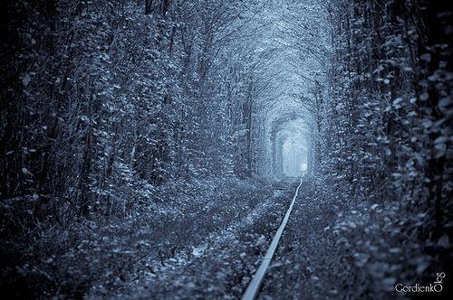 ウクライナのthe Tunnel of Love(愛のトンネル)  http://maps.google.co.jp/maps?f=q=embed=ja==50%C2%B0+45'+8.63%22+N++26%C2%B0+3'+22.25%22+E+==50.752396,26.05618=0.063534,0.110378=6=3,0x0:0x0,0=UTF8=50.752423,26.056137=0.063105,0.110378=m=13