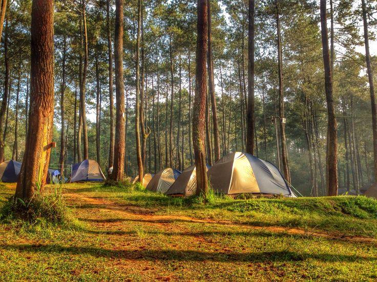 Jika anda merasa bosan dengan kepadatan kota Bandung, anda bisa menikmati keindahan alam Bandung dengan melakukan camping atau berkemah dengan keluarga. Pilihan untuk berkemah dengan keluarga bisa dilakukan di bumi perkemahan yang situasi dan kondisinya cukup bersahabat untuk anak-anak. Berikut ini dua bumi perkemahan untuk melakukan camping bandung. Berkemah di Bumi Perkemahan daerah Bandung Bandung