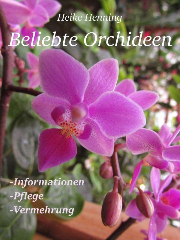 ber ideen zu orchideen arten auf pinterest. Black Bedroom Furniture Sets. Home Design Ideas