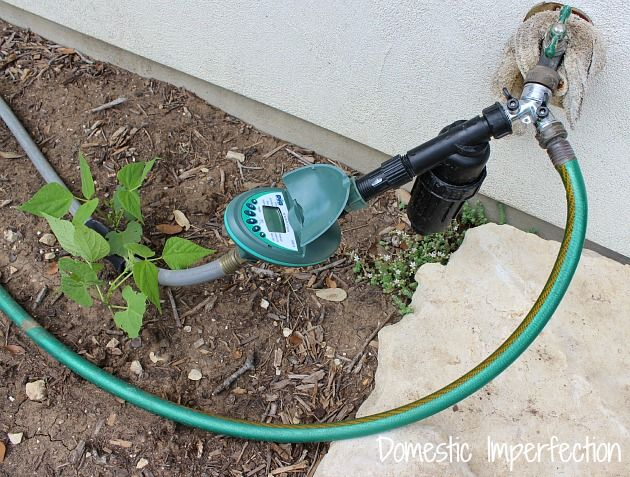 Hometalk :: I'm terrible about remembering to water plants and therefore have neve…
