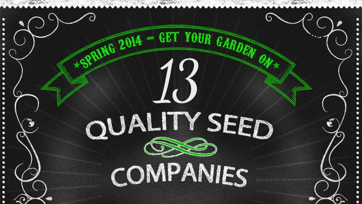 13 Quality Seed Companies to Order From!!