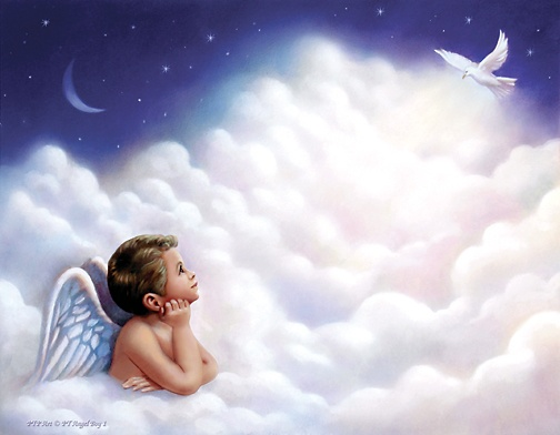 USD6.99 Angel Boy 1 Angel Backgrounds Pinterest Boys and Angel