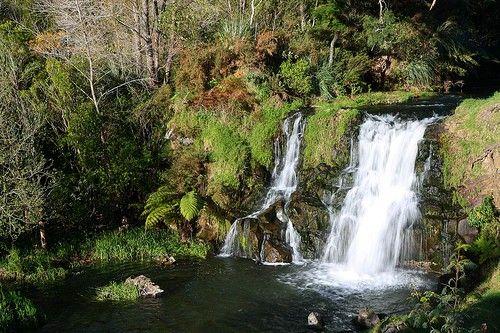 Waitangi Falls - Franklin Country