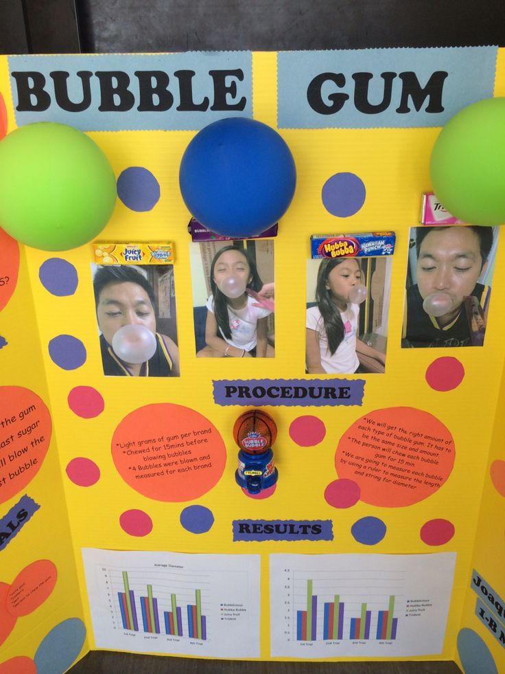 Fair Biggest Gum Board Display Project Bubble Science