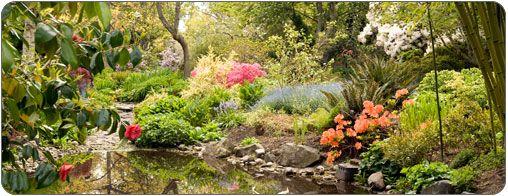 Pond in Finnerty Gardens, photo by Gary McKinstry