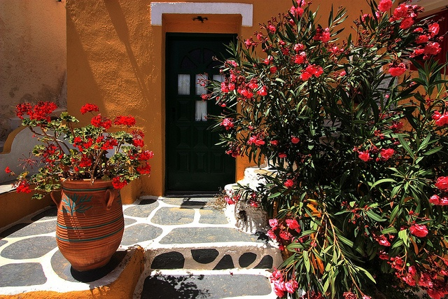 Flowered entrance, Ioulida, Kea Island, Cyclades, Greece,Hellas,Local Houses in Kea, Summer in Kea