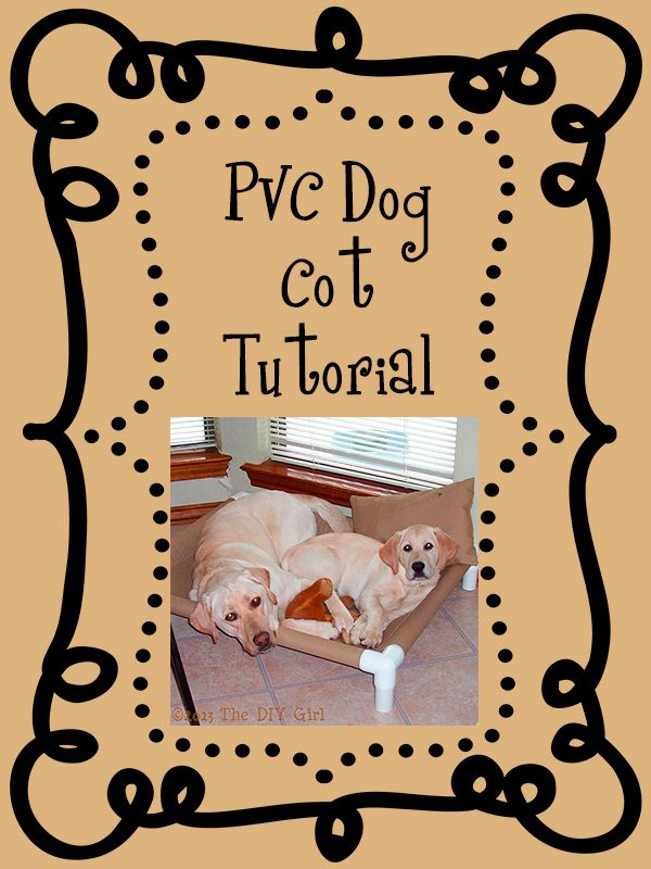 PVC Dog Cot Tutorial - Having two dogs with a disposition for hip displasia I wanted some kind of bed for them that would keep them off the hard floors. I made…
