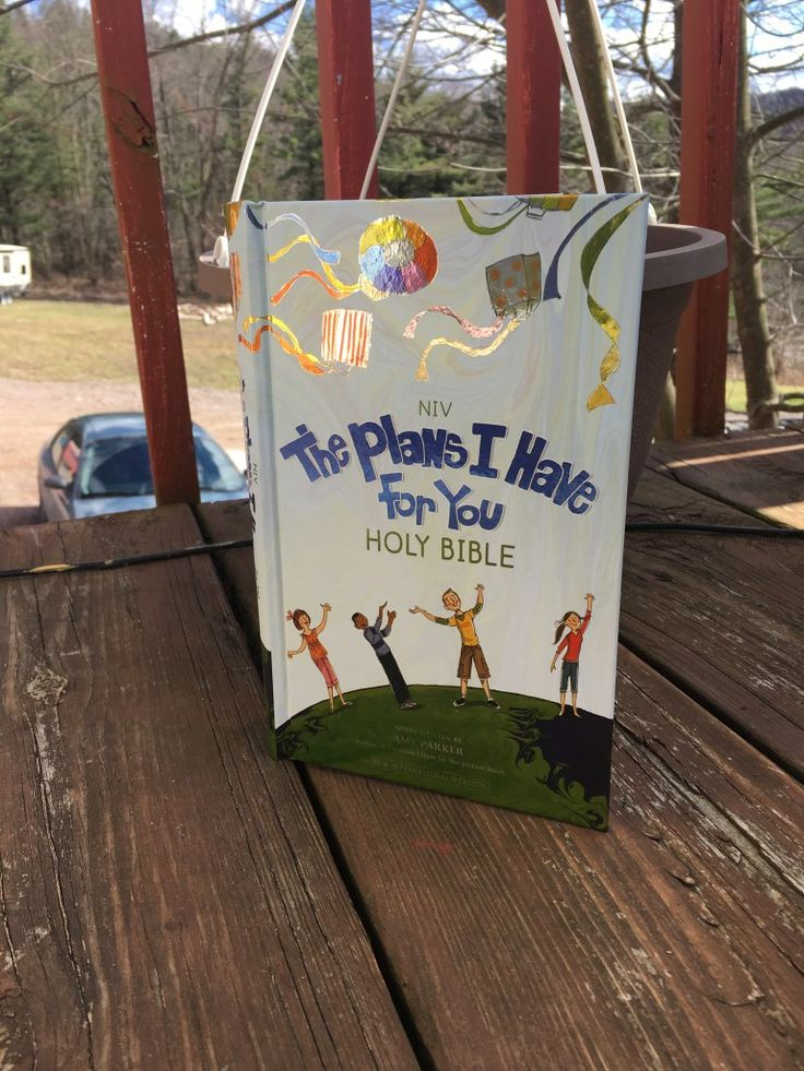 NIV The Plans I Have for You Holy Bible Review - Crystal Carder
