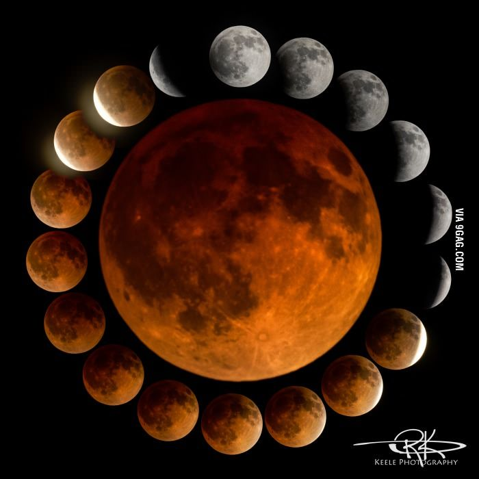 The best blood moon pictures I've seen all day. (Blood moon  April 2014)