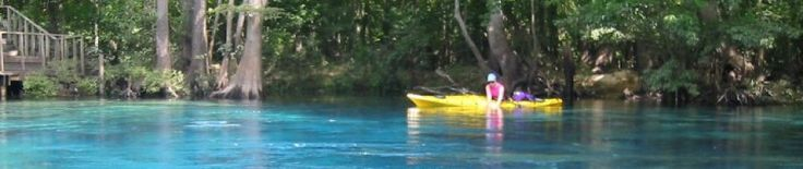 Kayaking on Econfina Creek near Panama City, Fla   Northwest Florida Outdoor Adventure