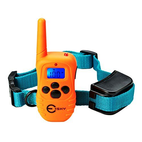 What Is A Good Dog Training Shock Collar Cheap