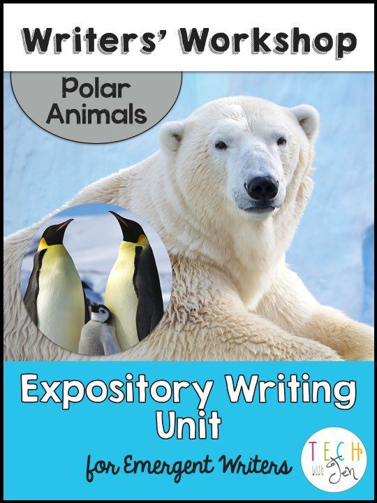 expository writing first grade Ccss examples of expository writing for 2nd grade ela-literacy l 2 examples of expository writing for 2nd grade 1 demonstrate command of the conventions of.