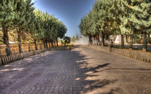 vialetto di ingresso