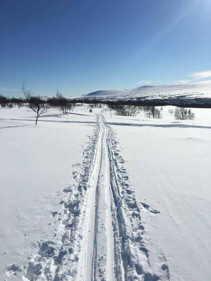 Lovely day in Tänndalen #crosscountryskiing #längdskidåkning #tänndalen #winteratitsbest