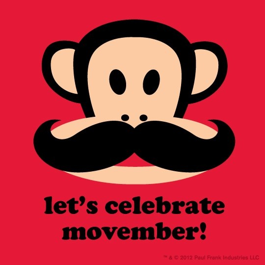 MOVEMBER  Learn more about cancer services at Doylestown Hospital at: http://www.dh.org/cancer?utm_source=pinterest&utm_medium=referral&utm_campaign=movember