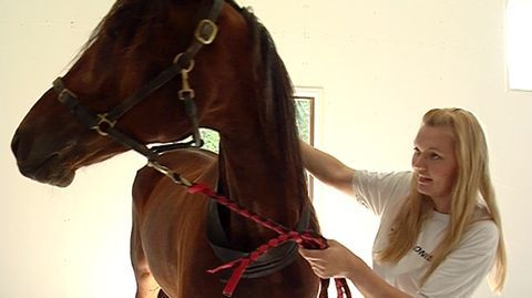 Finlands första rehabiliteringscenter för hästar finns i Kronoby. Kruunupyyhyn on valmistumassa Suomen ensimmäinen hevosten kuntoutuskeskus. YLE Pohjanmaa 8/2010.