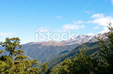 Mt Arthur, The Kahurangi National Park, New Zealand Royalty Free Stock Photo