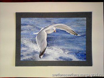 gull, seagull,Чайка 2 - Живопись акварельными красками, картины с изображением животных. МегаГрад - главный ресурс мастеров и художников