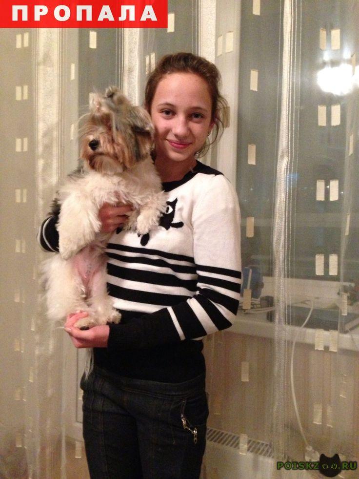 Пропала собака г.Сысерть http://poiskzoo.ru/board/read30777.html  POISKZOO.RU/30777 В августе в районе поварня пропала собака. Девочка белая с черными пятнами не большая, уши весят на животе клеймо. Похоже на болонку.   РЕПОСТ! @POISKZOO2 #POISKZOO.RU #Пропала #собака #Пропала_собака #ПропалаСобака #Сысерть