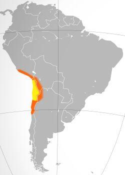 Mapa do Atacama. A área geralmente definida como o Atacama está em amarelo. Em laranja estão as áreas áridas circundantes do deserto de Nazca, Altiplano, Puna de Atacama e Norte Chico.